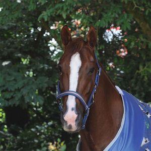 Weatherbeeta Coordinate Head Collar – Dark Blue/Brown/ Grey