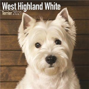 West Highland White Terrier Calendar 2021
